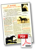 Article cheval barbe*
